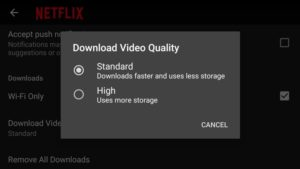 Download Netflix show and movies