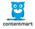 premium quality blog content
