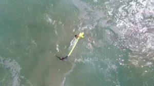 Life Guard Drone Little Ripper